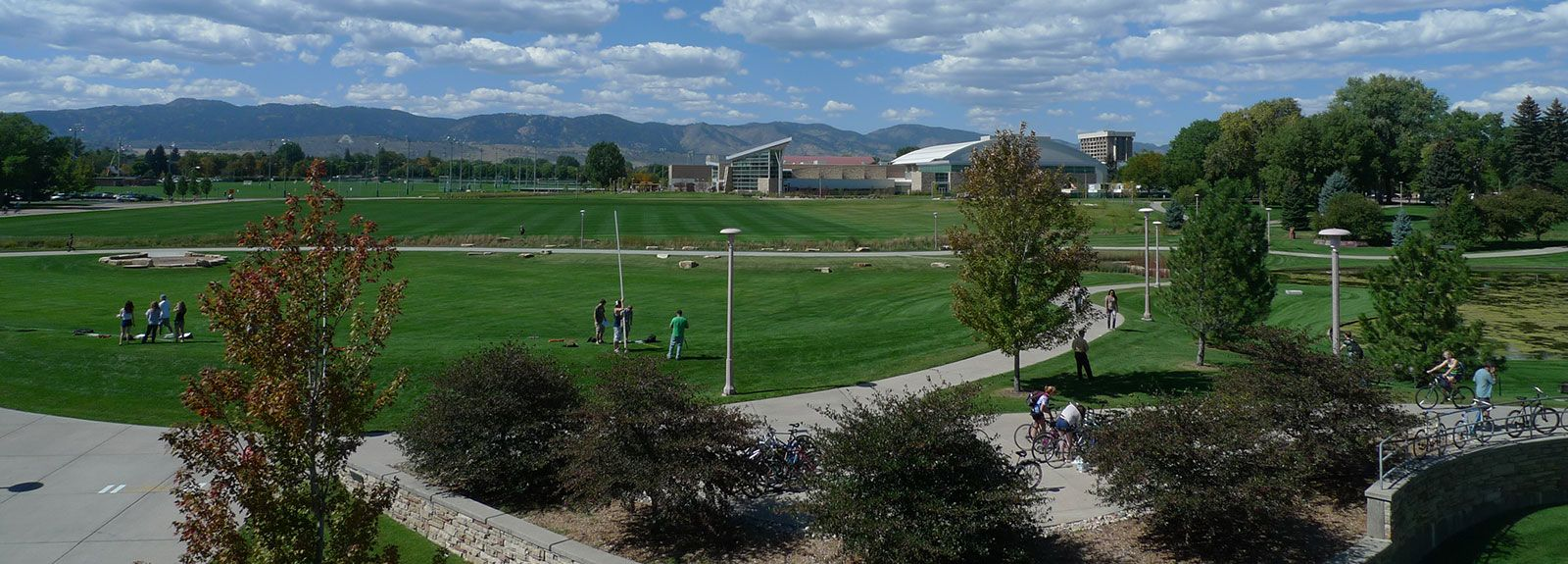 essay colorado state Colorado state Board for psychology